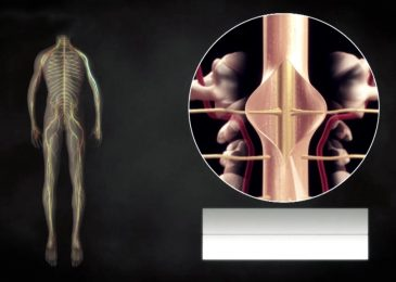 Most 4 Common Symptoms of Spinal Stenosis