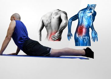 Main 6 Stretches and Exercises To Relieve Lower Back Pain